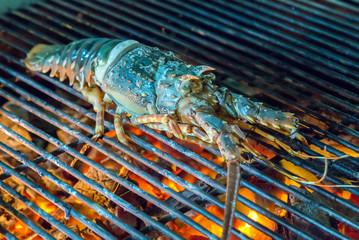 grill lobster preparation