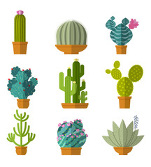 Wall Mural - Vector collection of cactus in flat style