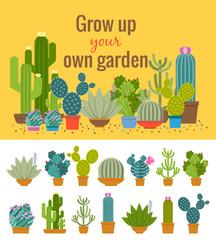 Wall Mural - Home cactus garden poster
