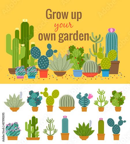 Wall mural Home cactus garden poster