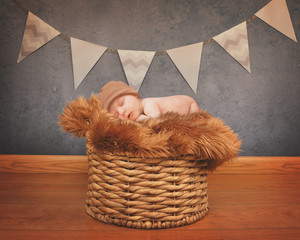 Portrait of a Newborn Baby Sleeping on Basket
