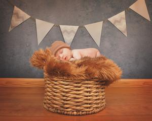 Portrait of a Newborn Baby Sleeping on Basket