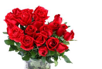 Red rose flower on white background.