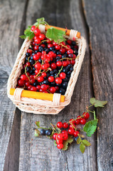 Little basket with redcurrant and blackberries on the old wooden table