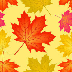 Seamless pattern autumn maple leaves.
