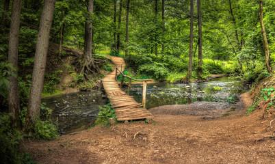Leśny strumień i Kładka