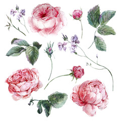 Set vintage watercolor bouquet of roses leaves branches flowers