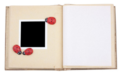 Photo frame with lady beetle
