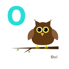 Letter O Owl Zoo alphabet. English abc with animals Education cards for kids Isolated White background Flat design