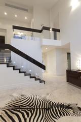 Hallway with zebra carpet