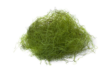 Fresh filamentous green algae