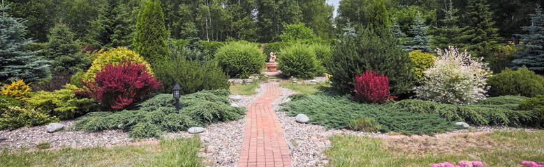 Beauty bushes in the garden