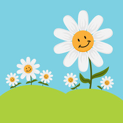 Happy Cartoon Daisy Flowers