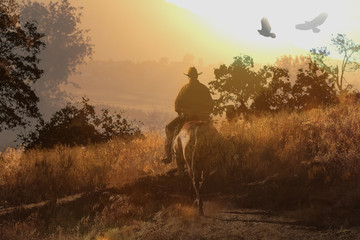 A cowboy rides his horse into the sunset through an orange and yellow meadow with crows flying above.