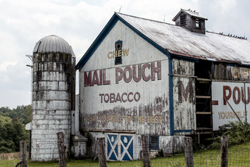 Old barn with a Mail Pouch Tobacco ad painted on in rural Ohio