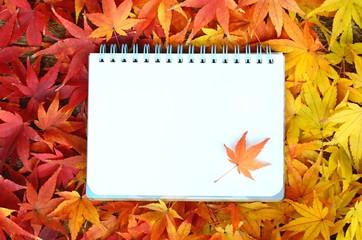 モミジの紅葉とスケッチブック