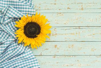 Hintergrund Türkis Sommer mit Blüten-Dekoration