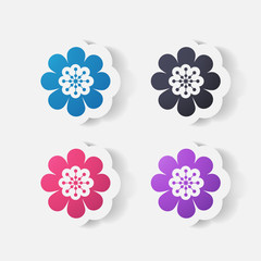 Realistic paper sticker: flowers. camomile