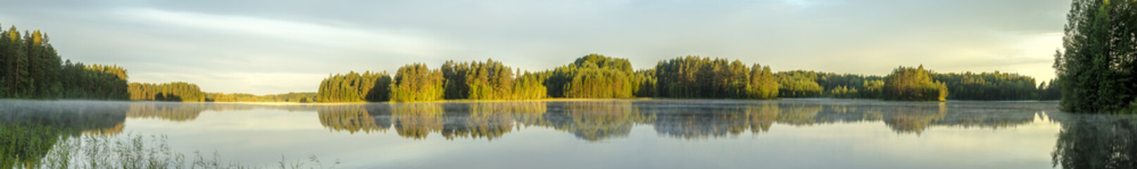 panorama view of the calm lake shore in Europe with fog, reflection of trees and greenery at dawn