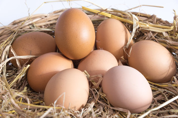 eggs on straw basket