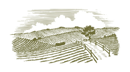 Woodcut Countryside