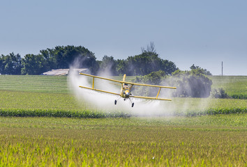 Yellow Crop Duster