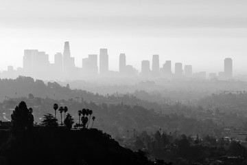 LA Smog and Fog Black and White