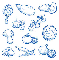 Set of fresh vegetables: egg plant, avocado, onion, garlic, artichoke, cabbage, penny bun, mushroom, hot peppers. Hand drawn doodle vector illustration.