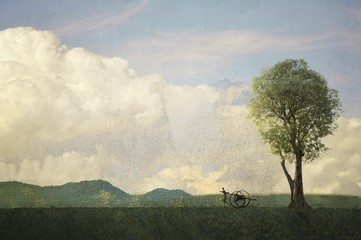 Vintage landscape with single tree and carter
