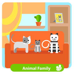 Set family cats in the room