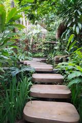Stepped path through the Thai nature.