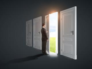 doors  to field