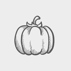 Squash sketch icon
