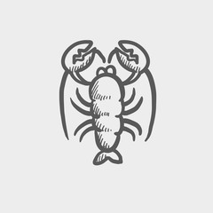 Lobster sketch icon