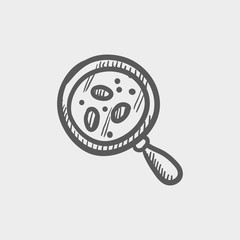 Microorganism under magnifier sketch icon