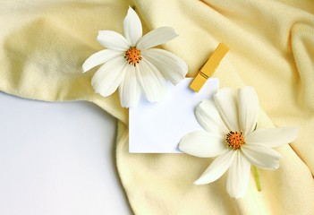blank white note-paper with clothes pin textile backdrop cosmos flowers yellow and white tones empty background