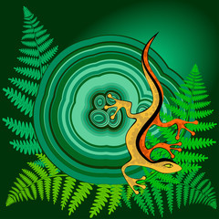Lizard on the malachite