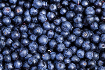 Background of fresh ripe blueberries.