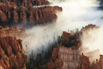 Pinnacles and hoodoos with fog in Bryce Canyon National Park