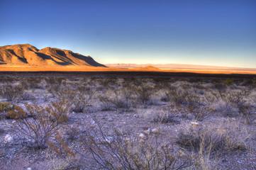 Desert, West Texas, USA