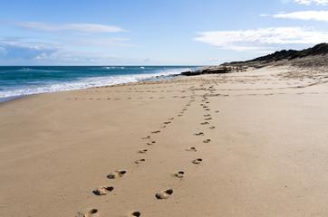 Rye back beach footsteps