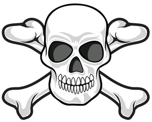 Skull and crossbone vector image