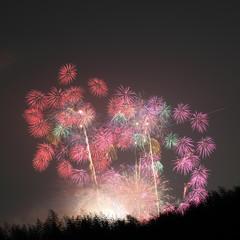 Skyrocket fireworks