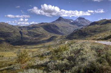 Norway wilderness