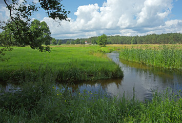 Poland.Chocina river in summer.Horizontal view