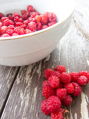 Heap of wild raspberries and a bowl