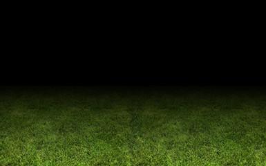 grass at the stadium.