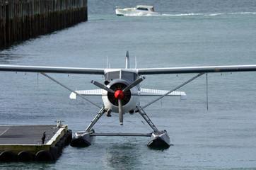 Seaplane mooring in Aucklnad Viaduct Harbour - New Zealand