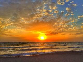 Splendida alba