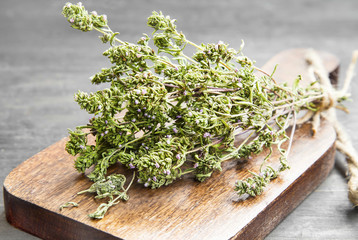 Thyme Culinary Herb